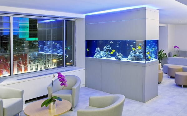 9 Ideas To Decorate Fish Tanks Homedecomastery