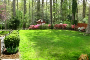 Landscape Backyard Ideas