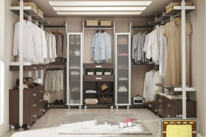 Walk In Closet Furniture