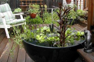 ... Supplies Water Garden Containers