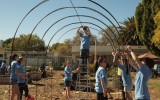 <b>Tips To Build A Simple Grape Arbor</b>