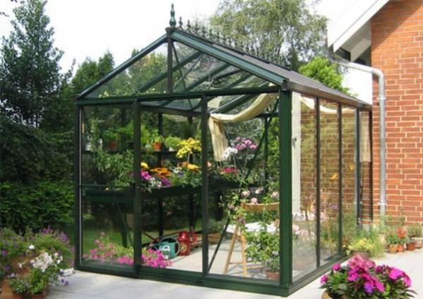 Glass House For Plants