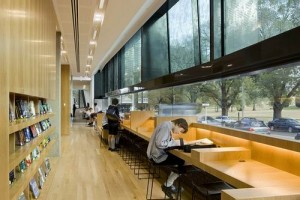 School Library Design Pictures