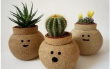 <b>Creative Interior Decoration with Indoor Planter Ideas</b>