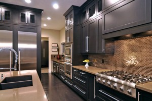 Modern Kitchen Pictures and Ideas