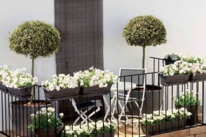 Balcony Decorating Ideas Pictures Photo
