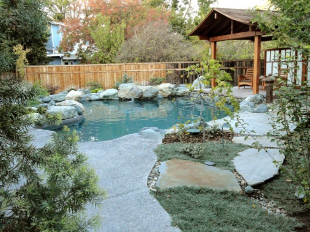 Designer Pool Backyard Home Pic