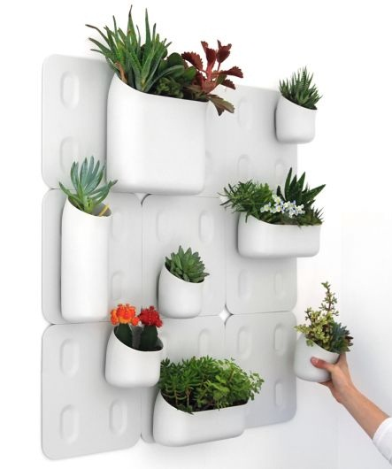 Indoor Wall Vertical Planters