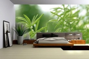 Master Bedrooms with Green Walls Photo