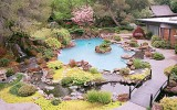 <b>Front and Back Yard Center Piece Ideas</b>