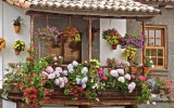 <b>Nice Ideas for Your Balcony</b>