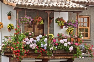 Nice Ideas for Your Balcony Pic